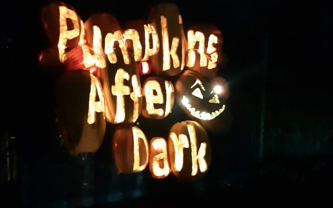 5 Things You Must Know Before Attending Pumpkins After Dark.